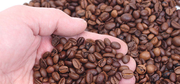 open hand with coffee beans
